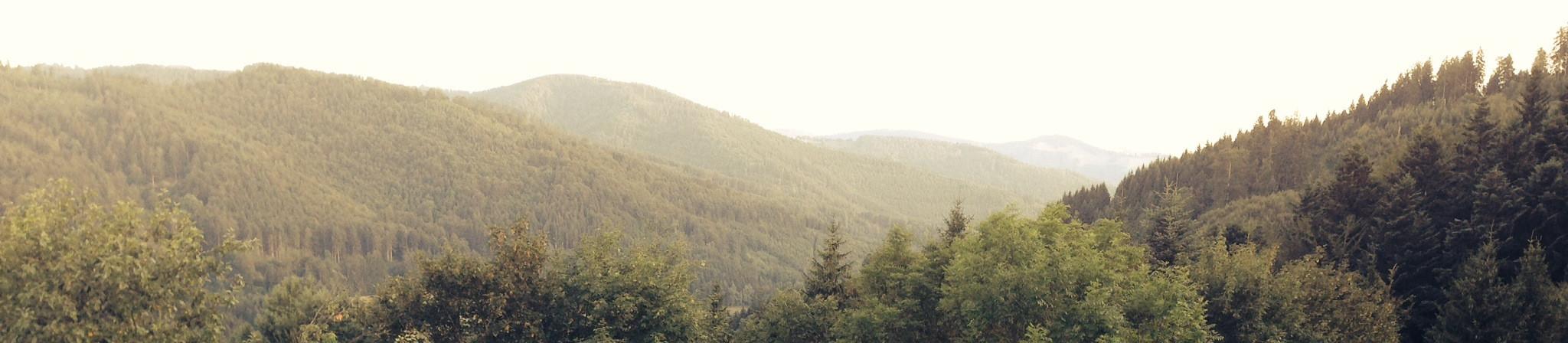 Penzión pod vejmutovým lesom